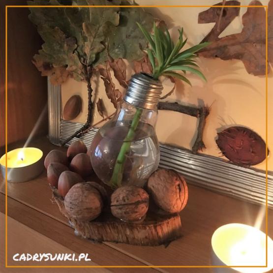Dekoracja w posaci wazonu wykonanego z zarówki oraz owoców lasu przmocowanych do podstawka drewnianego. Jaki może być dobry prezent na dzień matki?
